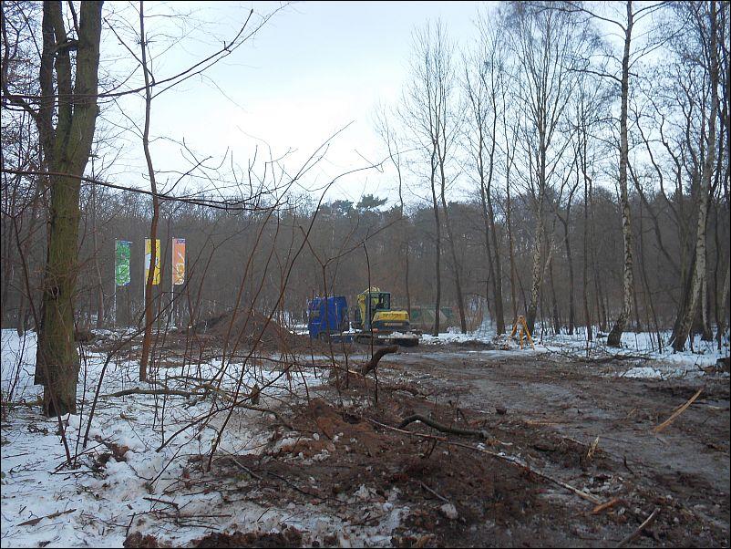 frische Schneise zur Darwineums-Baustelle