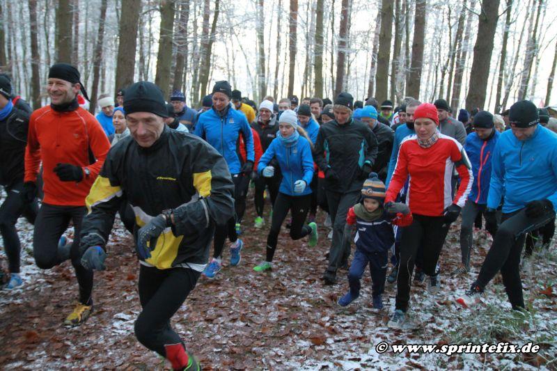 Gänsebratenbauchweglauf in Güstrow @ Güstrow | Güstrow | Deutschland