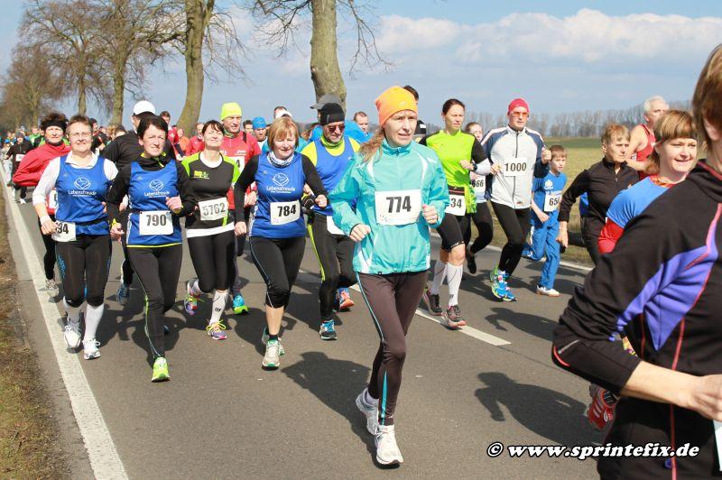 37. Ueckermünder Haffmarathon (LM) @ Ueckermünde