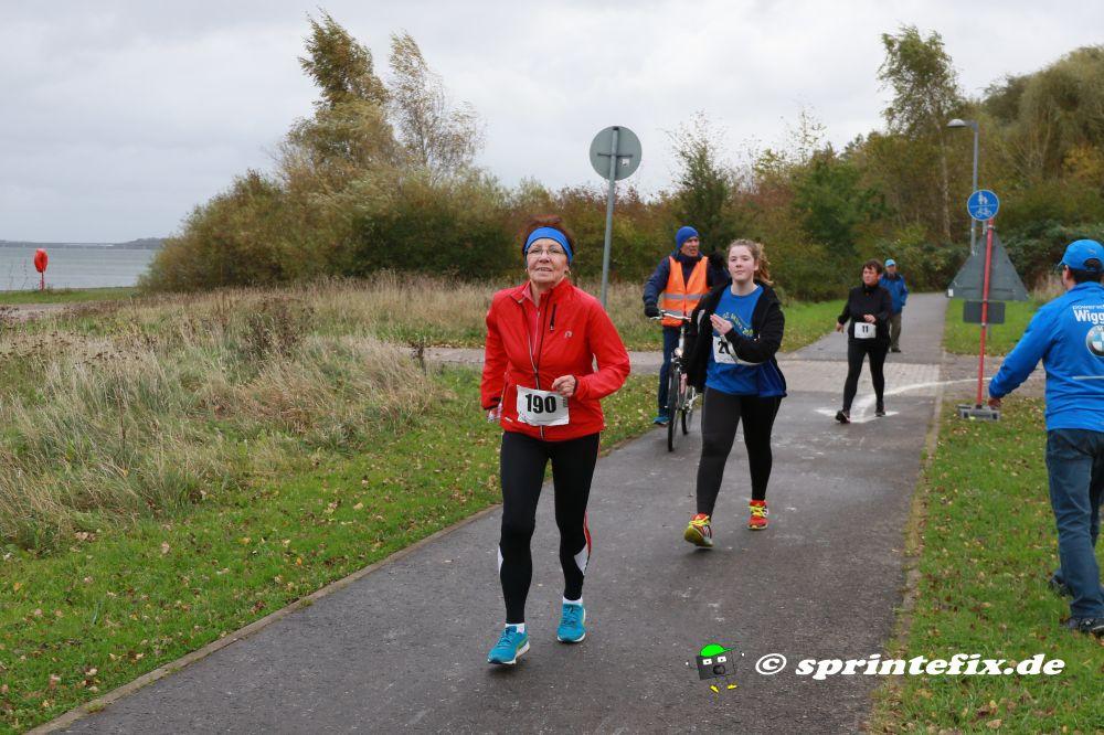 25. Stralsunder Hochschullauf (10 miles, 8 km, 3 km) am 27.10.2018 @ Stralsund