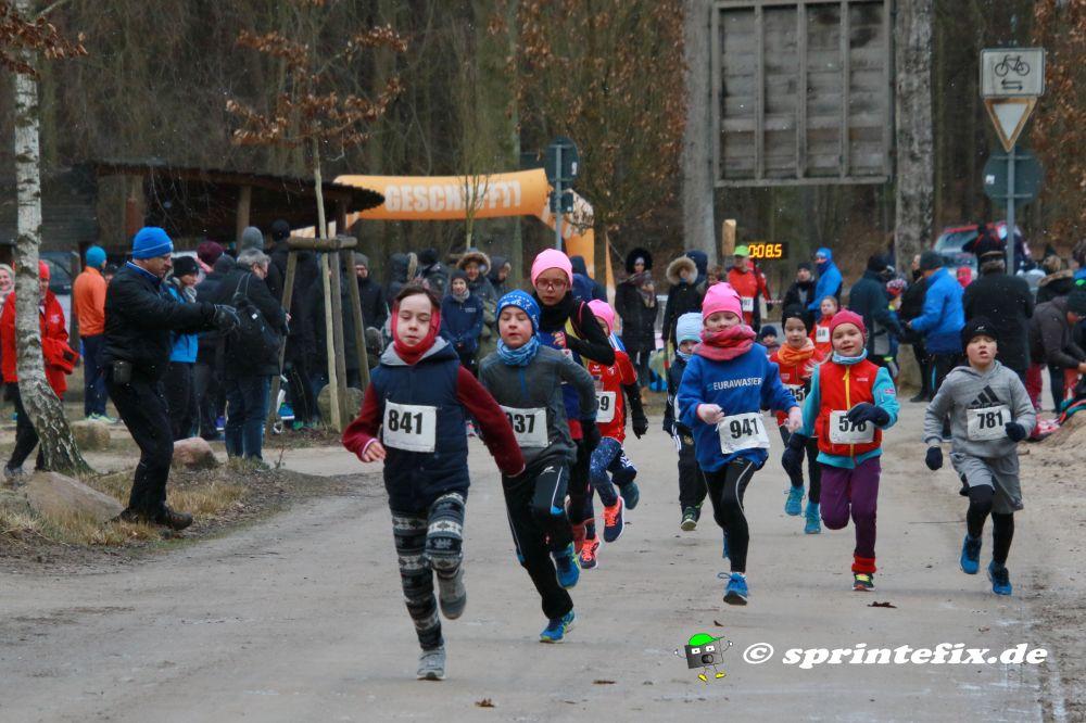 41. Warener Winterlauf @ Waren (Müritz)